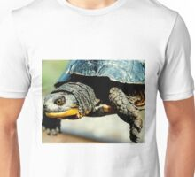 Mr turtle..how many licks does it take to get to the center of a toosie pop? Unisex T-Shirt