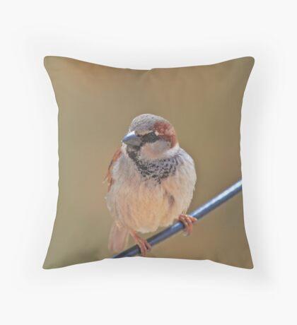 Bird On A Wire ! Throw Pillow