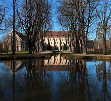 Abbaye de Royaumont, Val d'Oise, France by remos