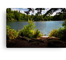 Camping Location Canvas Print