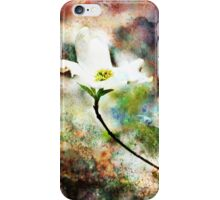 Climate Change iPhone Case/Skin