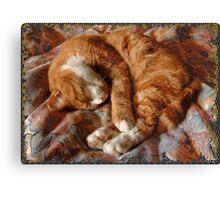 Thomas, Sleeping Canvas Print