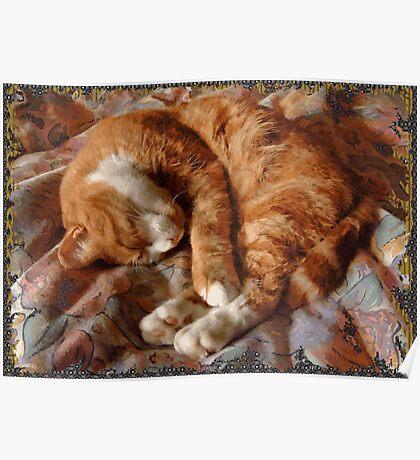 Thomas, Sleeping Poster