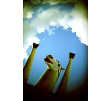 flying horse 1 Photographic Print