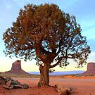 Tree - Monument Valley by Honor Kyne
