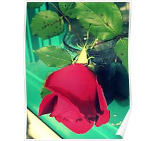 Rose in My Window Poster