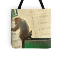 Curious Monkey Reading A Sign In Kerala, India Tote Bag