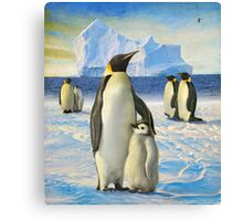 antarctic coast penguins Canvas Print