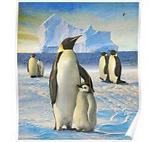 antarctic coast penguins Poster