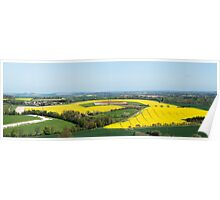Rapeseed fields Berkshire downs Poster