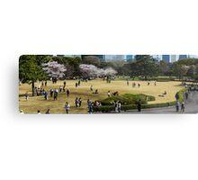 Japan Sakura - Tokyo imperial palace garden Metal Print