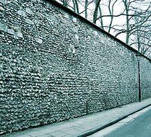 England Winter, Winchester, City Wall by littlebearwolf