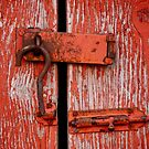 Peeling Paint, Rusty Lock by Rae Tucker