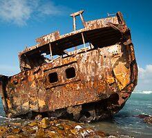 The Meisho Maru by Brandon Dyzel