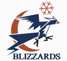 Washington Blizzards (Washington Wizards) by Malkin