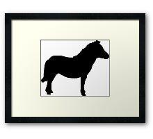 Shetland Miniature Pony Framed Print