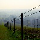 Follow the Fence by mikebov