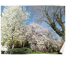 Spring Colors, Coles Street, Jersey City, New Jersey Poster
