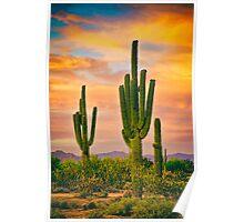 Arizona Life Poster