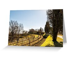 Vineyard in early spring Greeting Card