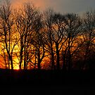 Easter Sunrise Service by Penny Rinker