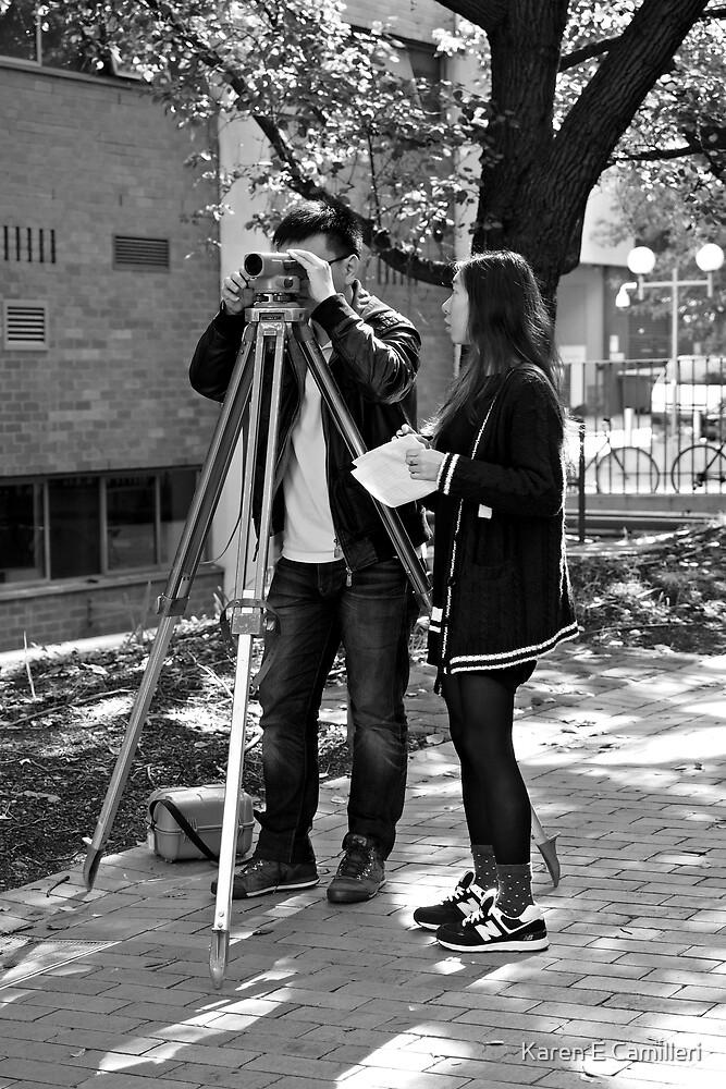 Surveying by Karen E Camilleri