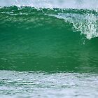 A Florida Gulf Coast Wave!! by jozi1