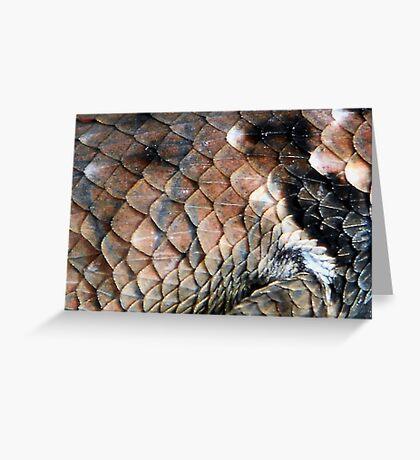 ©NS Reptile Pattern IIA Greeting Card