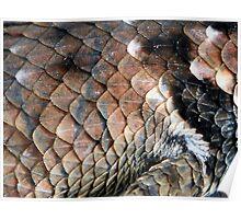 ©NS Reptile Pattern IIA Poster