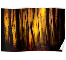 Autumn Forest Abstract Poster