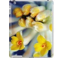 Fuzzy Flowers iPad Case/Skin