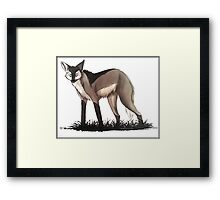 following the pack Framed Print