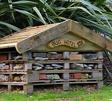 Bug Hotel.......... by lynn carter