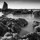 The Wellington Pinnacles by John Violet