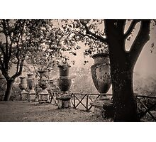 Ancient Garden Photographic Print