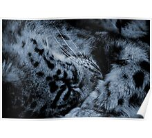 THE SLEEPING SNOW LEOPARD Poster