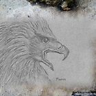 African Black Eagle (Aquila verreauxii) - Ethnic series by Maree  Clarkson