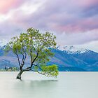 Lake Wanaka - New Zealand by Kimball Chen