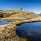 Tussock and Tarns - New Zealand by Kimball Chen