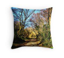 The Path, Centurion Way, Chichester Throw Pillow