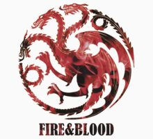 Fire and Blood by PT Chen