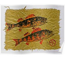 Gyotaku - Yellow Perch - Orange Roughy Poster