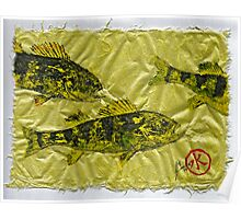 Gyotaku - Yellow Perch - Walleye Poster