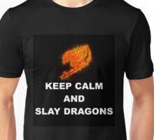 Keep Calm and Slay Dragons Unisex T-Shirt