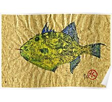 Gyotaku - Triggerfish - Queen Triggerfish Poster