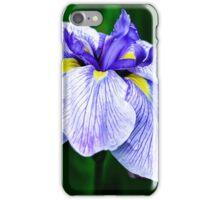 Beauty Incarnate  iPhone Case/Skin