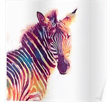The Aesthetic - Watercolor Zebra Illustration Poster