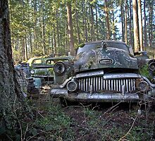 Buick Eight Grill - Trust Salvage - Auburn WA by Ralf372