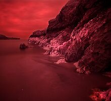 Infra Red Seaweed  by Mark Haynes Photography