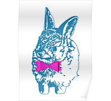 Blue Bunny, Pink Bow Poster